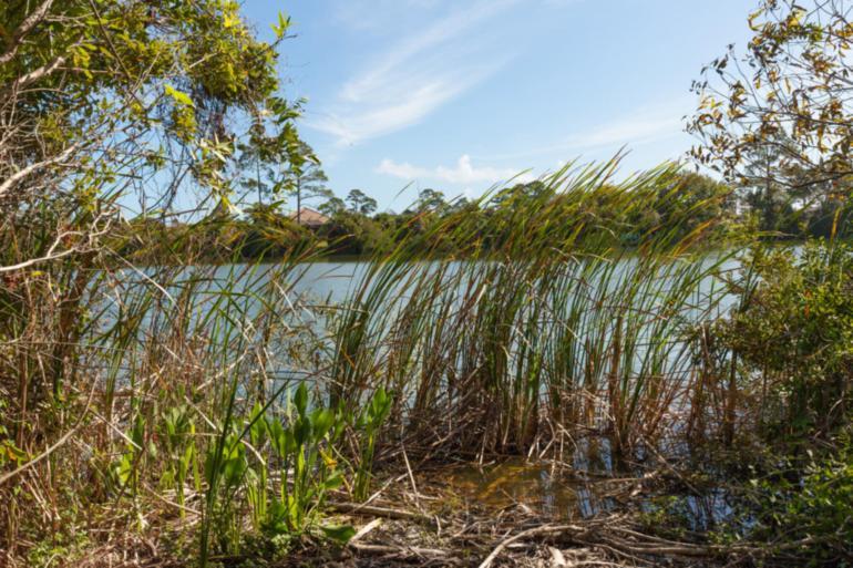 14 N Lakewalk Dr Palm Coast Plantation_20