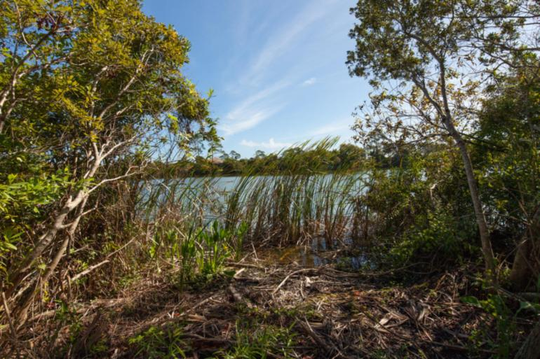 14 N Lakewalk Dr Palm Coast Plantation_42