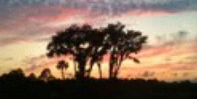 2 Scarlet Oak Circle Palm Coast_11