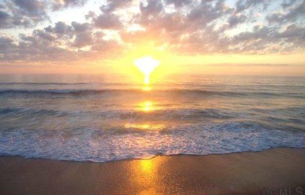 26 Sandpiper Ln Palm Coast_06