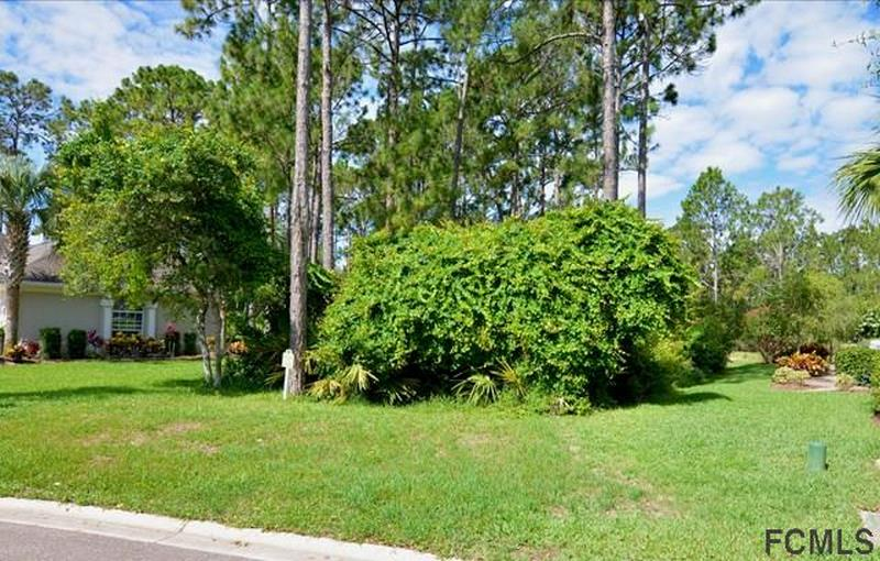 42 Osprey Cir N Palm Coastt_17