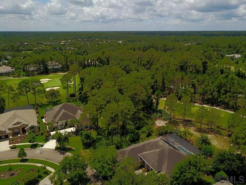 42 Osprey Cir N Palm Coastt_18